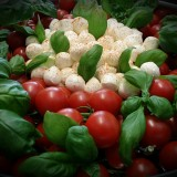 party-eventservice-tomate-mozarella
